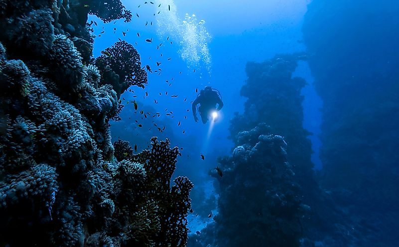 A diver enters the fascinating underwater world.