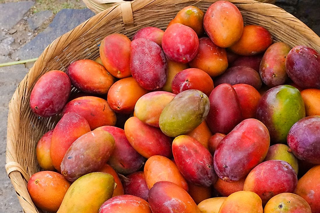 Mangoes are on the crops grown in El Salvador.