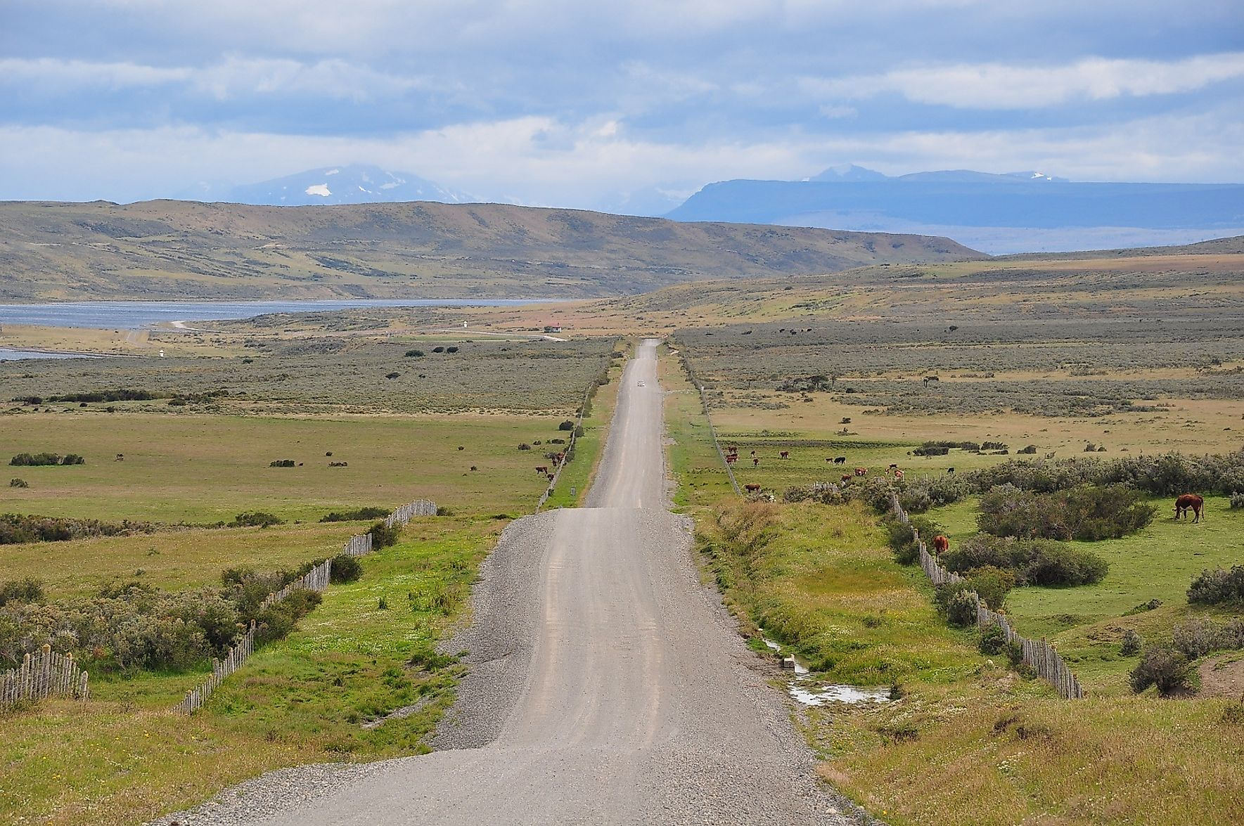 A metalled road running through a grassland in Patagonia, Chile.
