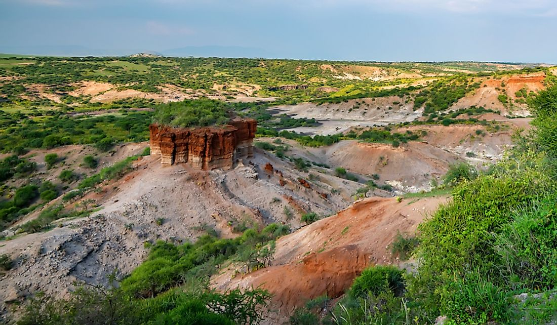 Olduvai Gorge is an important paleoanthropological site located in Tanzania, Africa.