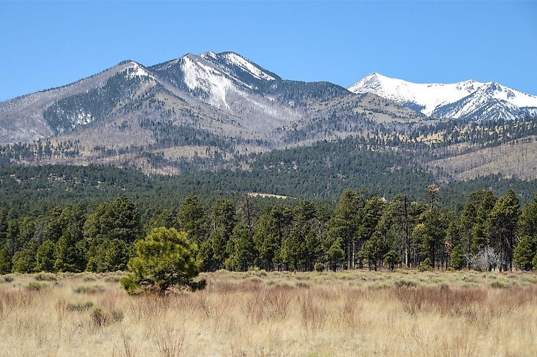Humphreys Peak, Arizona.