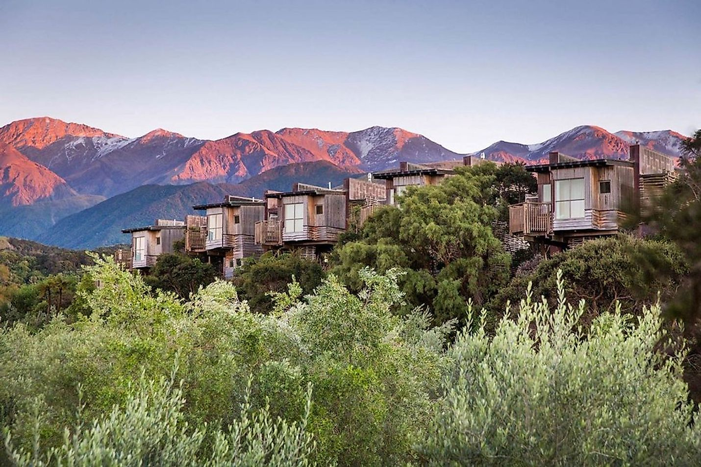 Hapuku Lodge and Tree Houses, New Zealand. Image credit: www.hapukulodge.com