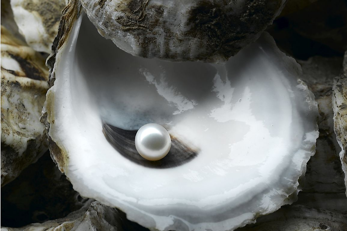 Although mollusks naturally produce pearls, most pearls today are cultured.