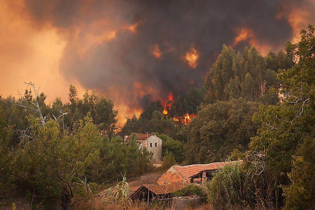 Forest fire in Portugal.