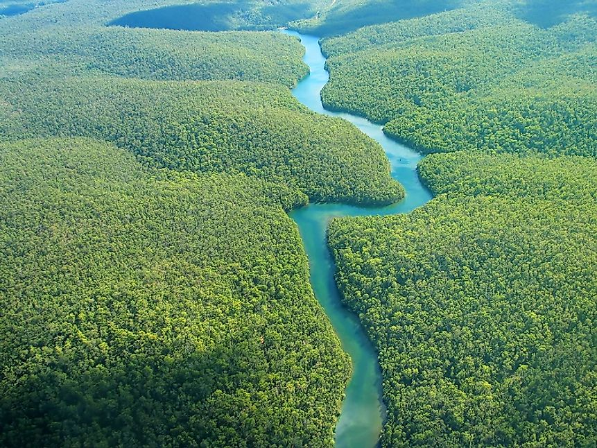 The Amazon River cuts through some of the most biodiverse ecosystems in the world.