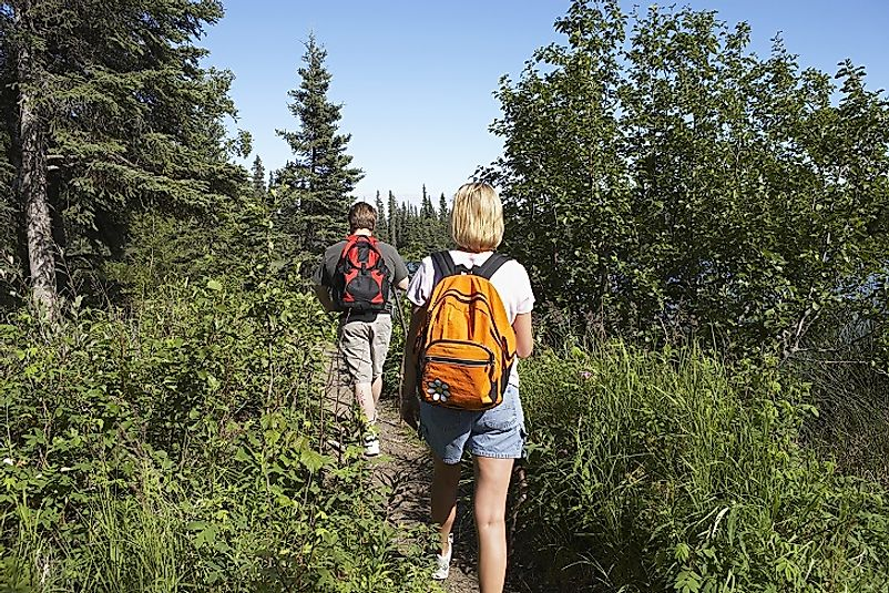 A couple enjoys an evening amidst the great outdoors as they trek along this trail in the U.S. state of Alaska.