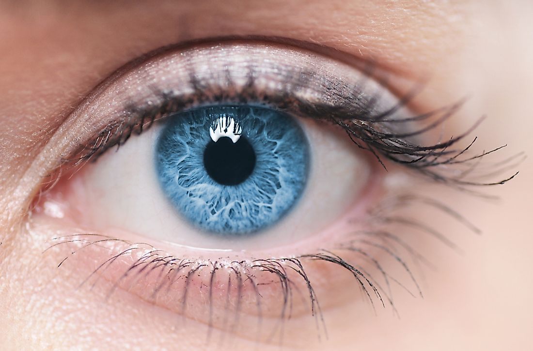 Blue eyes are uncommon, with about 8-10% of the world having them.