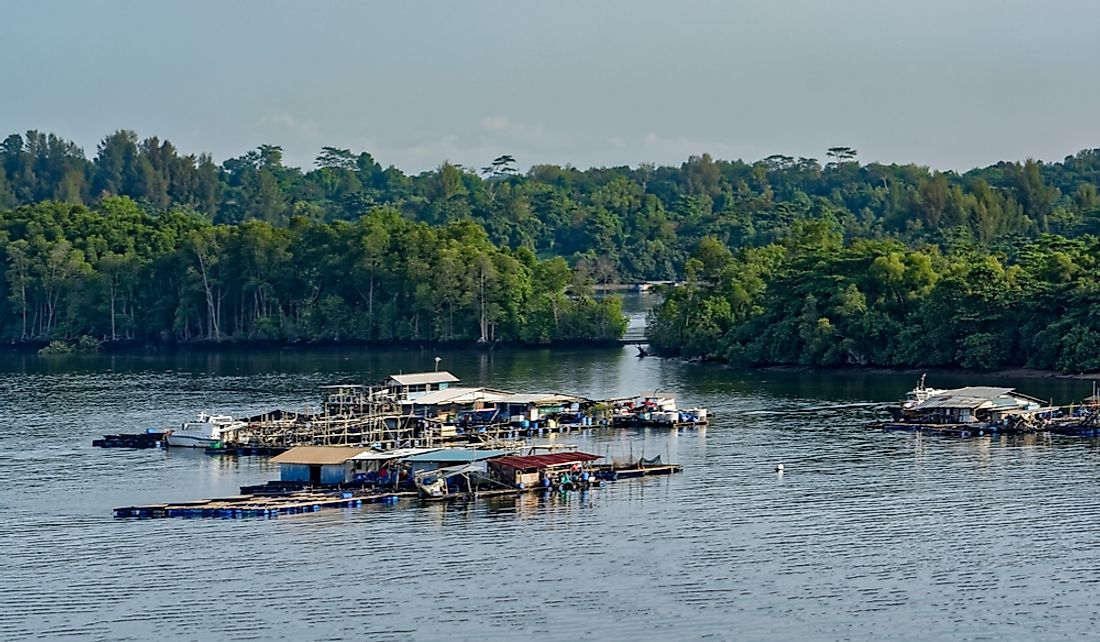 Floating fish farm in the Johor Strait.
