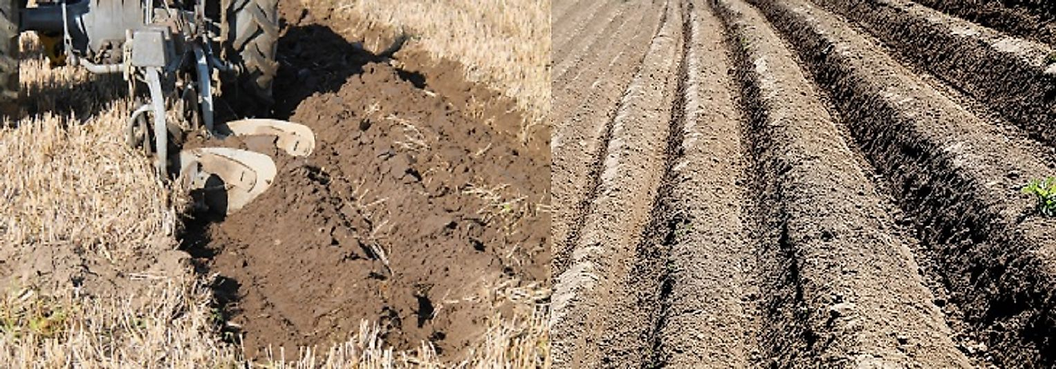Furrowed field (right); tractor and plow in action (left).