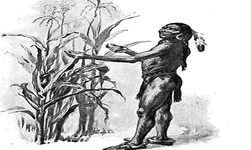 Wampanoag Tribe Of Gay Head 3