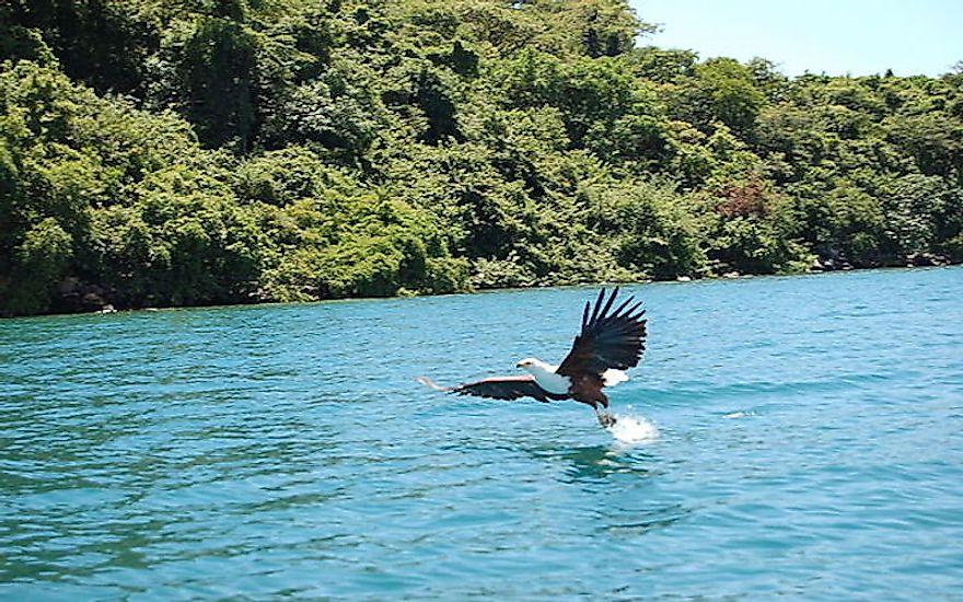 #3 Lake Malawi