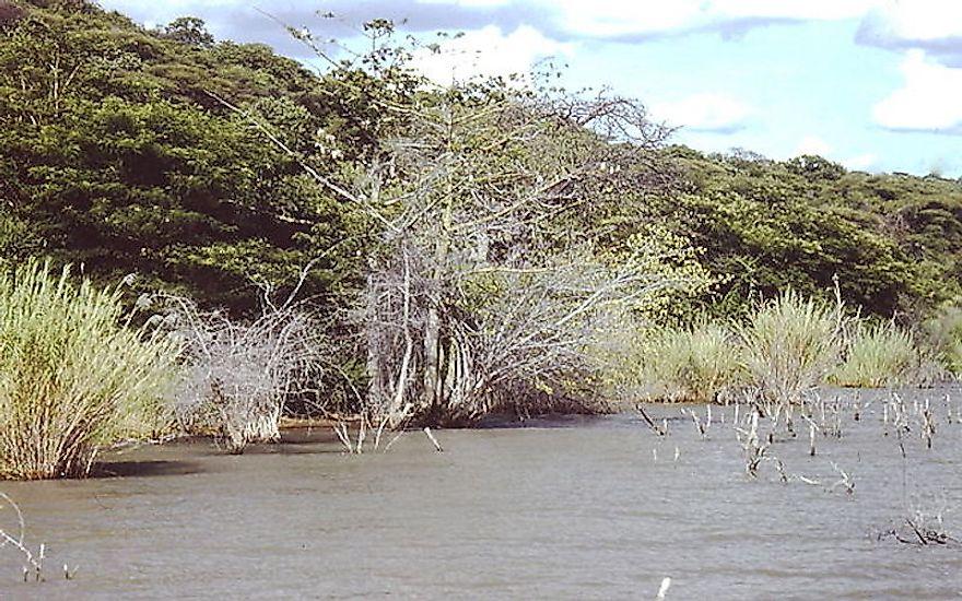 #6 Lake Rukwa