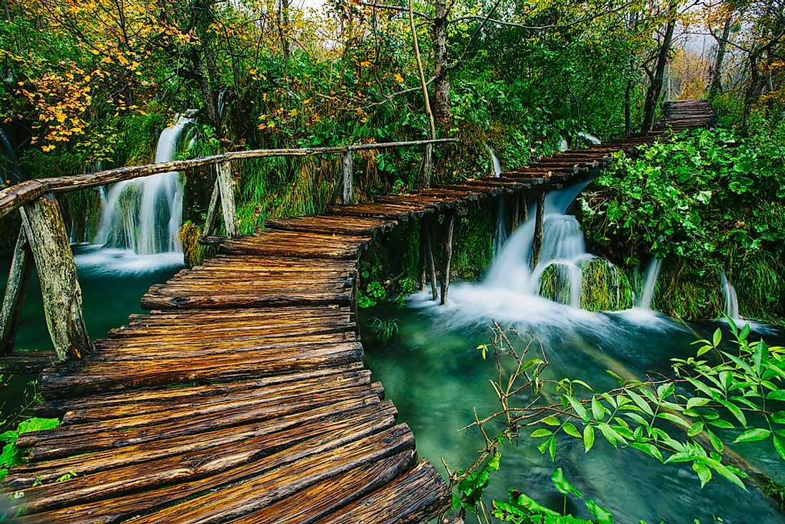 A trail deep in the forest of the Plitvice Lakes National Park in Croatia.