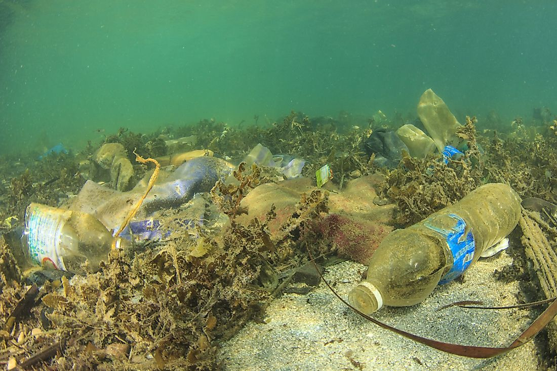 Marine pollution is detrimental to wildlife and ecosystems.