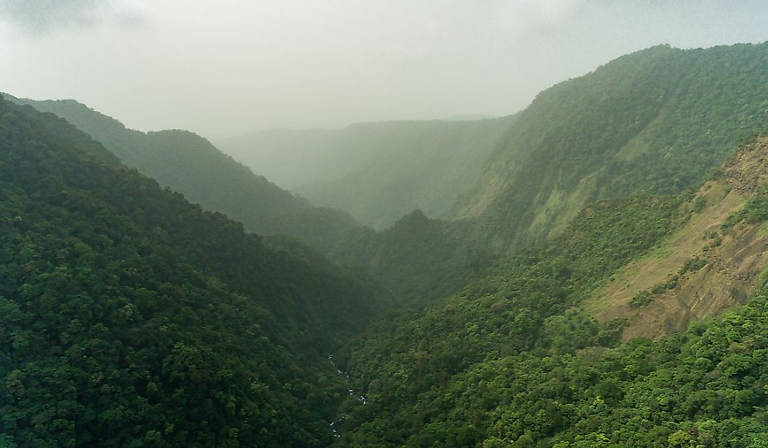 Forest cover is one of the important natural resources of Equatorial Guinea.