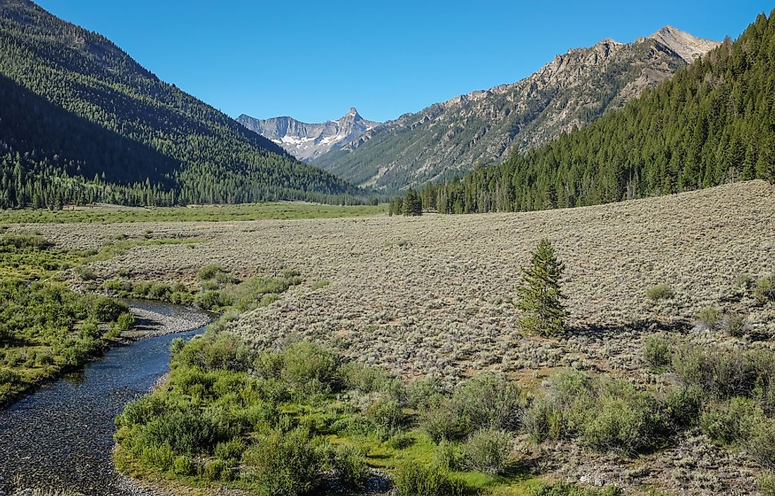 Salmon-Challis National Forest, Idaho. It is the second largest National Forest in the continental United States.