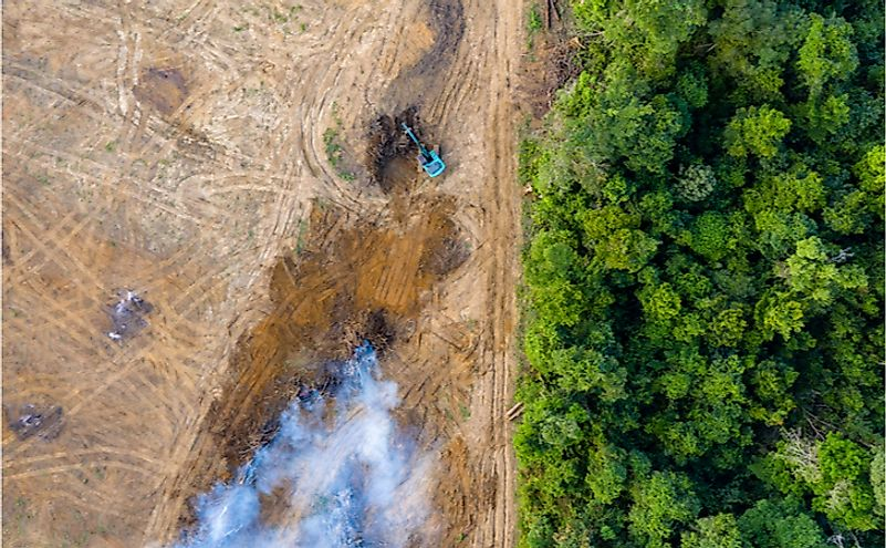 An aerial view of deforestation in a rainforest.
