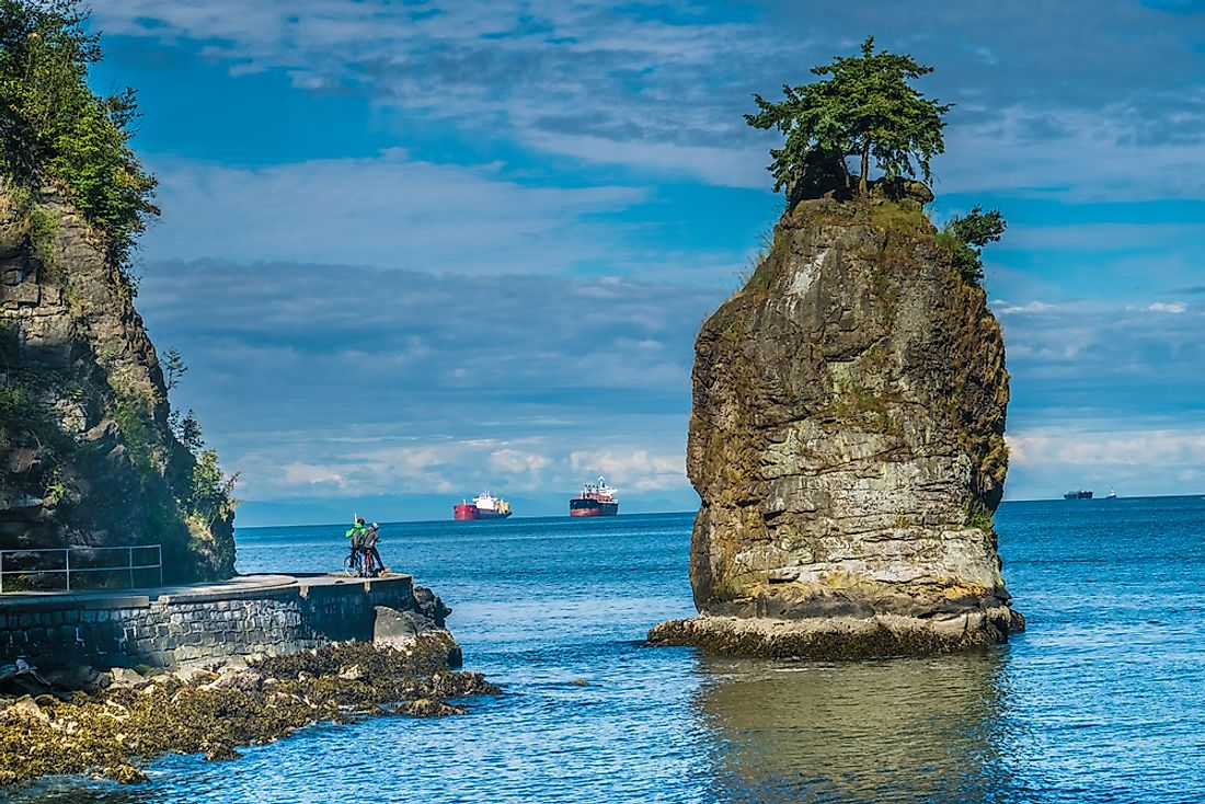 Small Douglas fir trees sit atop Siwash rock in Vancouver's Stanley Park.