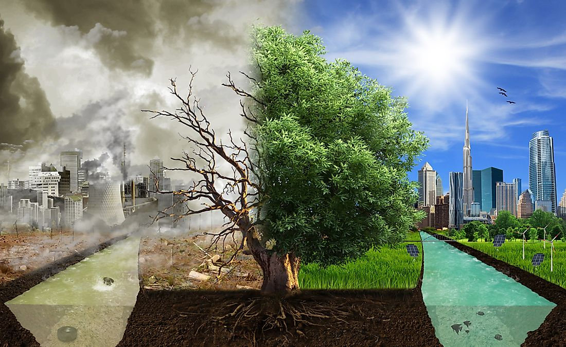 Human actions greatly contribute to global warming and climate change.
