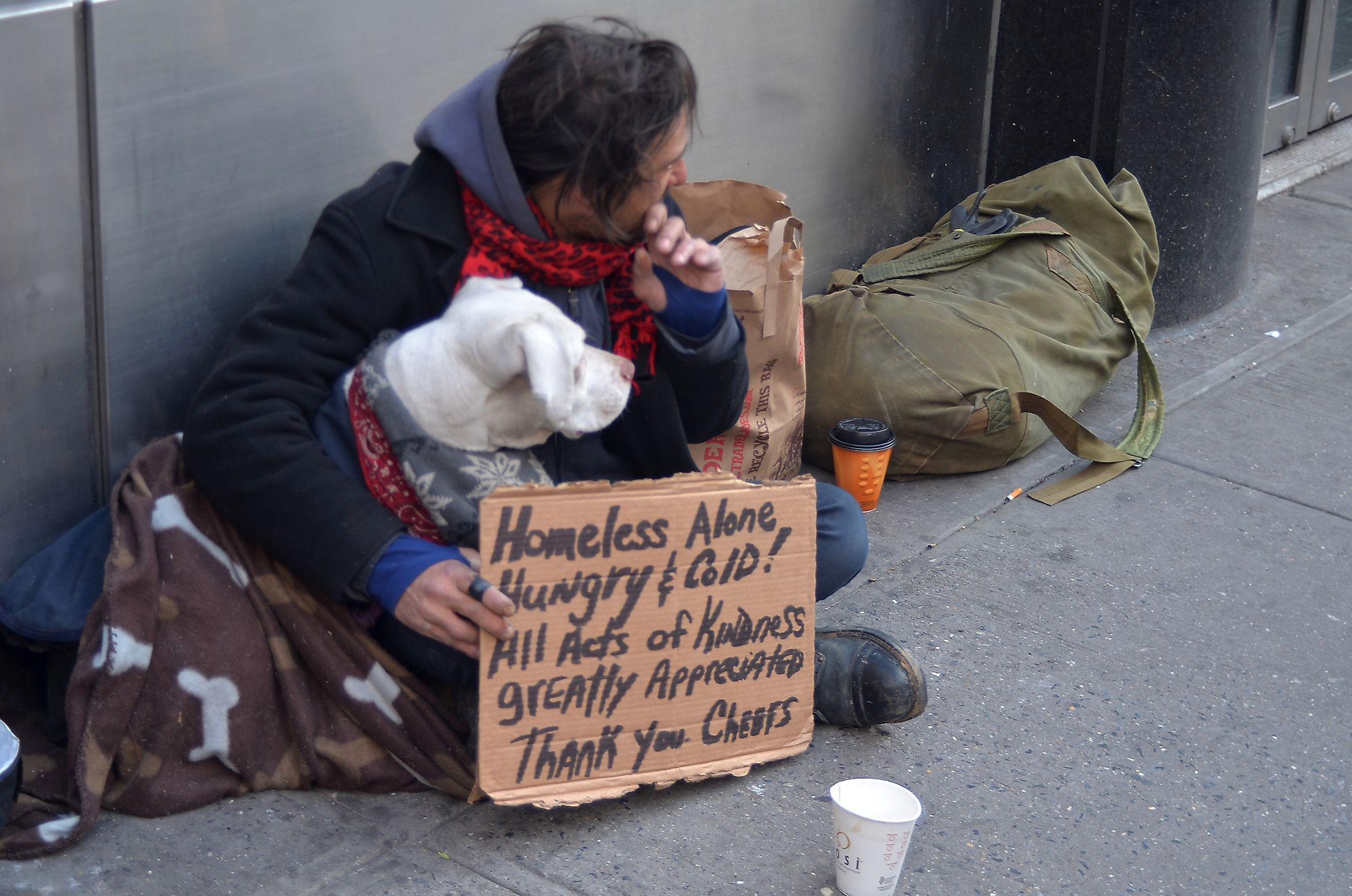 A homeless man sitting on the street with a dog and asking for help February 25, 2012 in New York City.