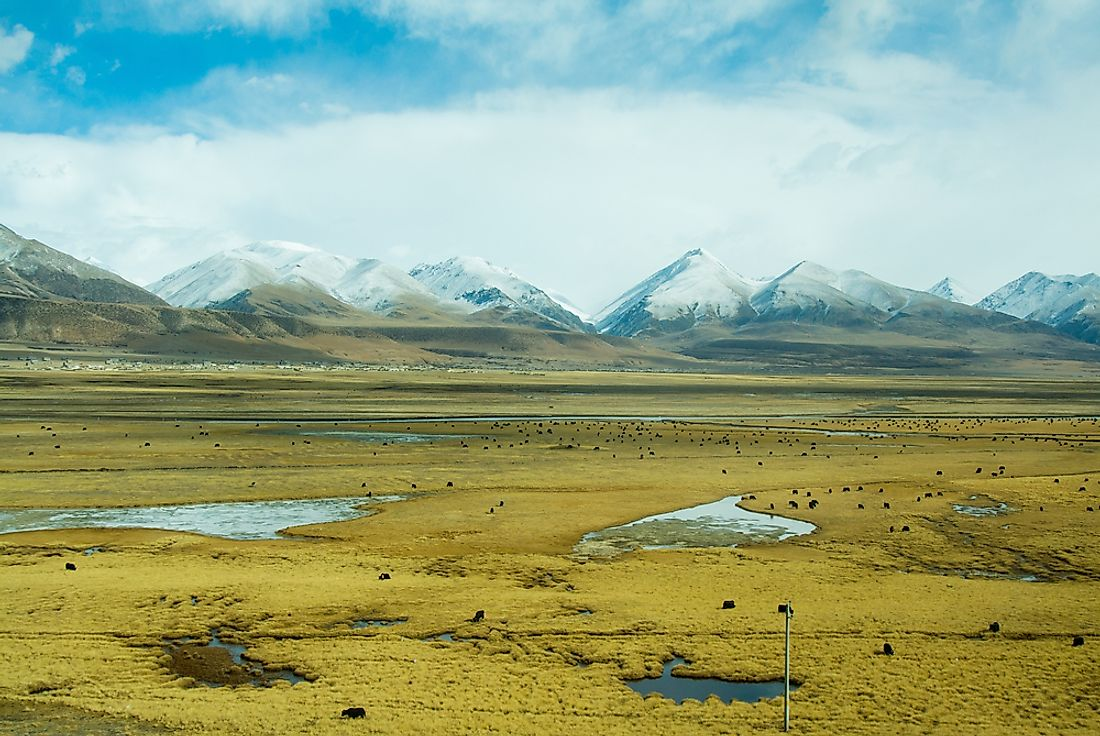 "The Tibetan Plateau has been referred to as the ""roof of the world""."
