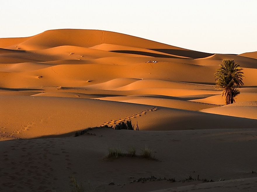 Vast expanses of sand dunes in the Moroccan Sahara.