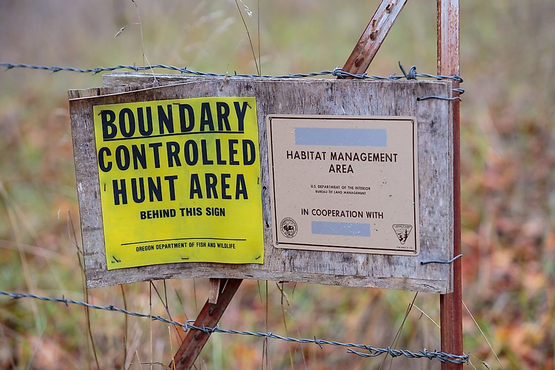 The North Bank Habitat Management Area was instrumental in the protection of the Columbian white-tailed deer.  Editorial credit: Joshua Rainey Photography / Shutterstock.com
