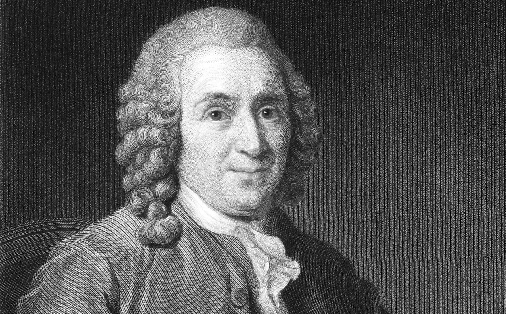Carl Linnaeus, for whom the Linneaeus system of taxonomy is named after.