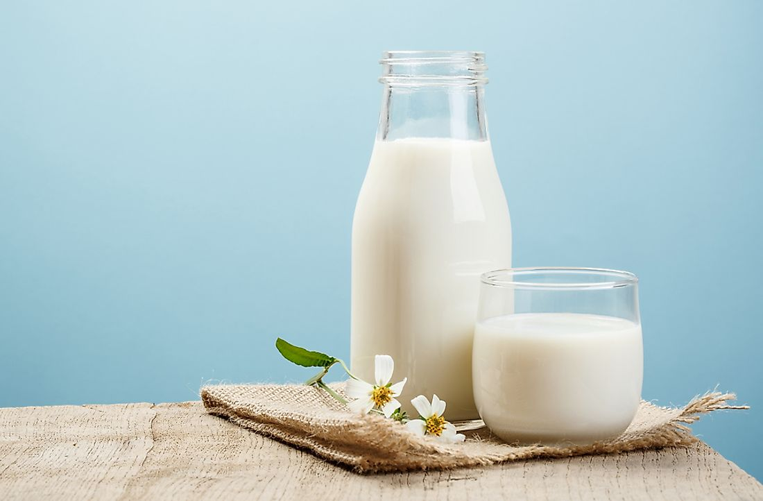 Milk is popular beverage worldwide, and is also used extensively in cooking and baking.