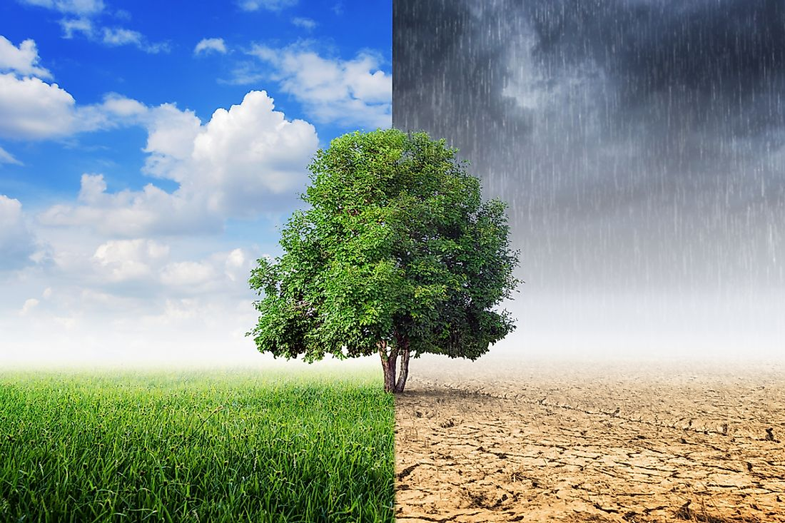 The difference between weather and climate can sometimes be a difficult topic to grasp.