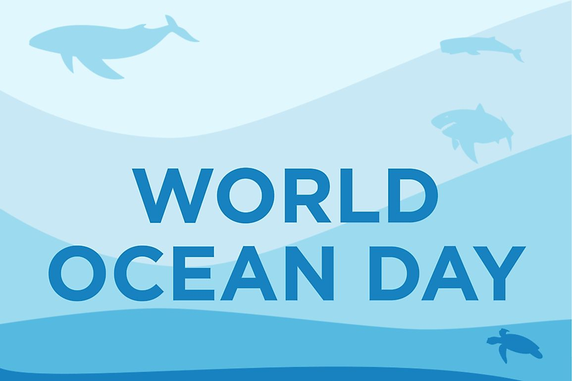 World Oceans Day has been celebrated since 1992, and acknowledged by the UN since 2008.