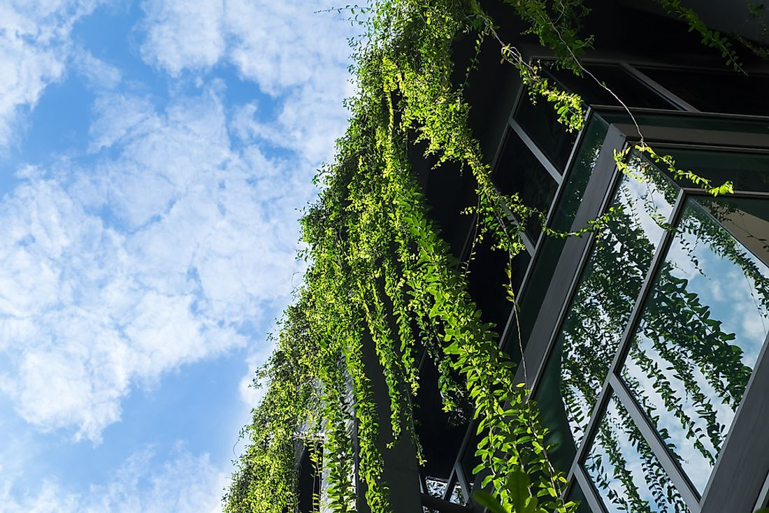 Greenery can be a major contributor to a city's environmental atmosphere and sustainability.