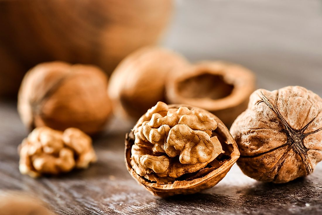 Walnuts are one of the world's most popular nuts.