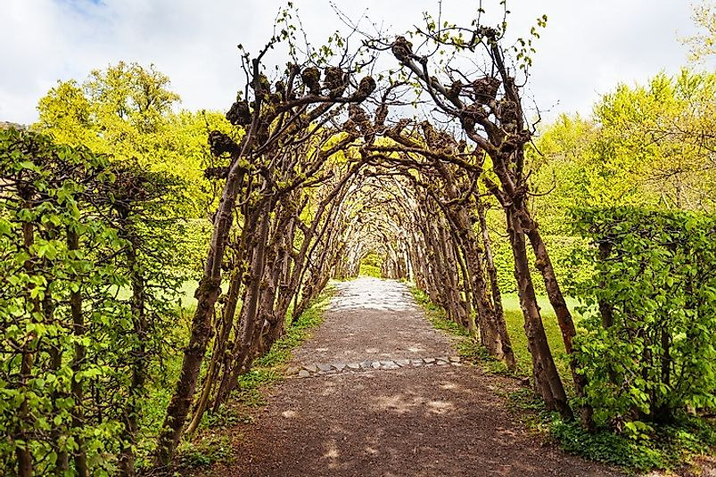 A botanical arch in one of the formal gardens of Bergpark Wilhelmshöhe.