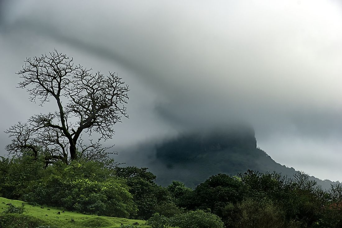 About 75% of the annual rainfall in India comes from summer monsoons.