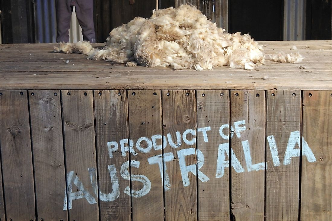 Wool and animal hair are some of the biggest agricultural exports of Australia.
