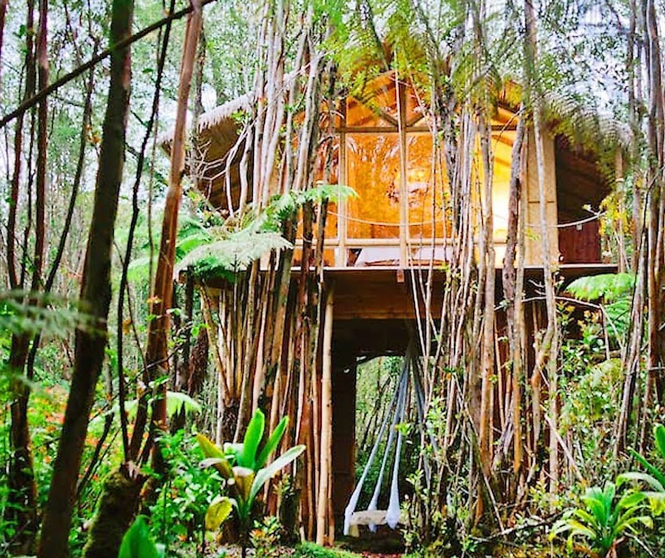 Dreamy Tropical Treehouse, Hawaii. Image credit: www.airbnb.co.in