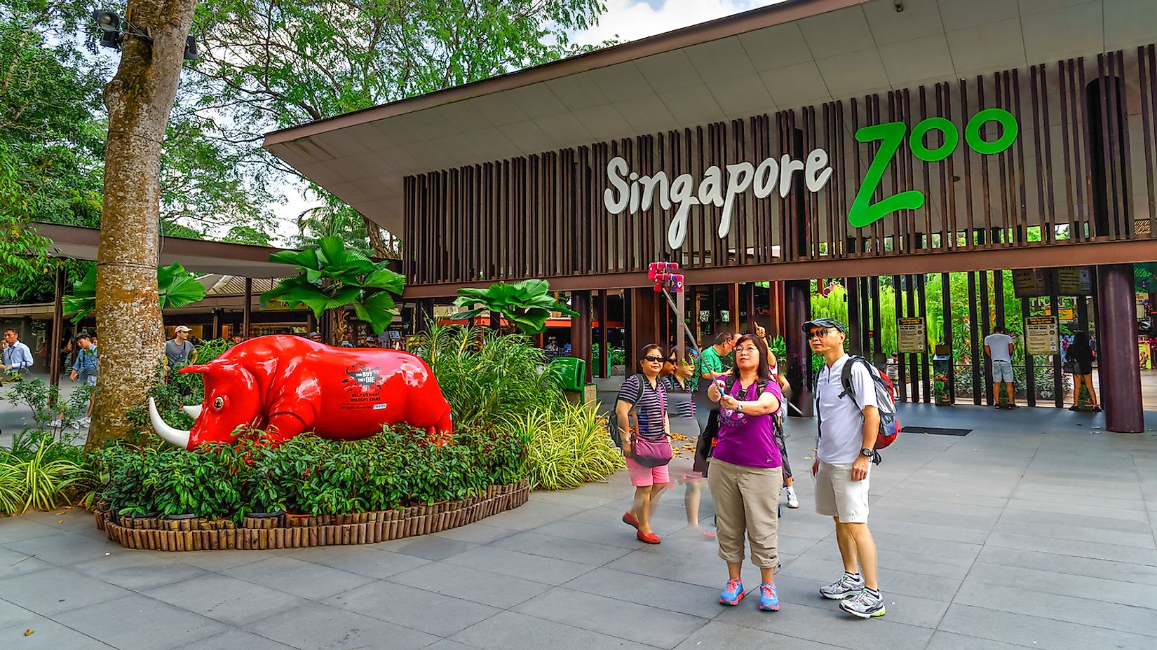 Visitors using smartphone, camera and selfie stick to take photo at the entrance of Singapore Zoo. With 315 species of animal, the zoo attracts 1.7 million visitors each year. Image credit: Trong Nguyen/Shutterstock.com
