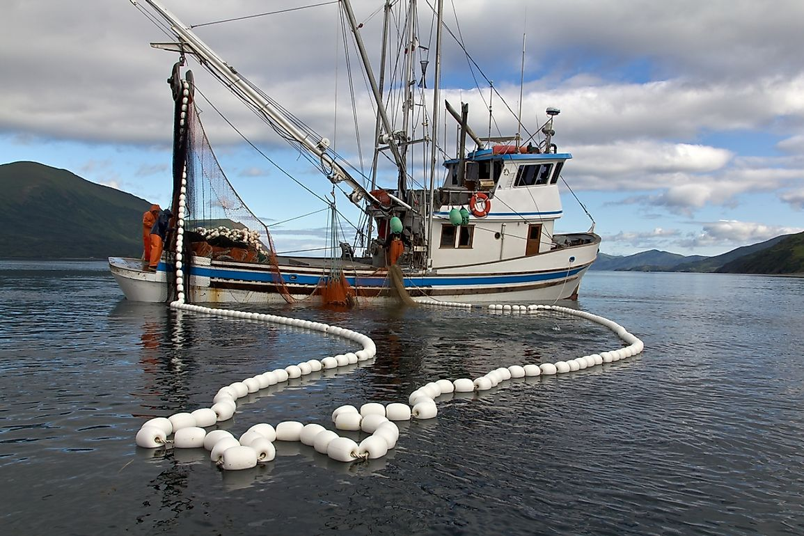 As human populations place increasing strain on the capacities of terrestrial agriculture, fishing will likely be looked to more than ever to facilitate food security.