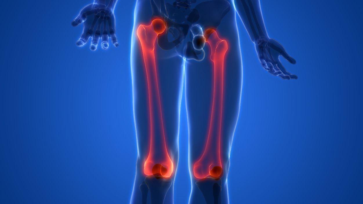 What Is The Largest Bone In The Body Worldatlas
