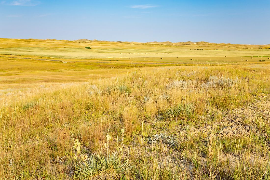 Little Missouri National Grassland is the largest national grassland in the US.