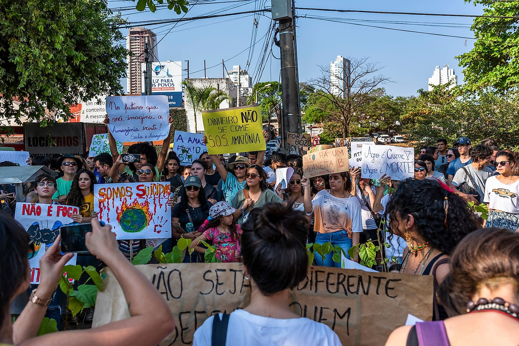 A crowd holds up the posters written in Portuguese language to protest to protect Amazon forest in Goiania, Goias/Brazil. Image credit: Hpoliveira/Shutterstock.com