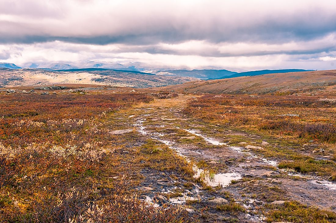 A moorland in Scotland, United Kingdom.