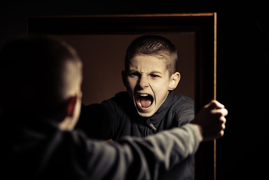 children that observed aggressive behavior were more likely to be aggressive,