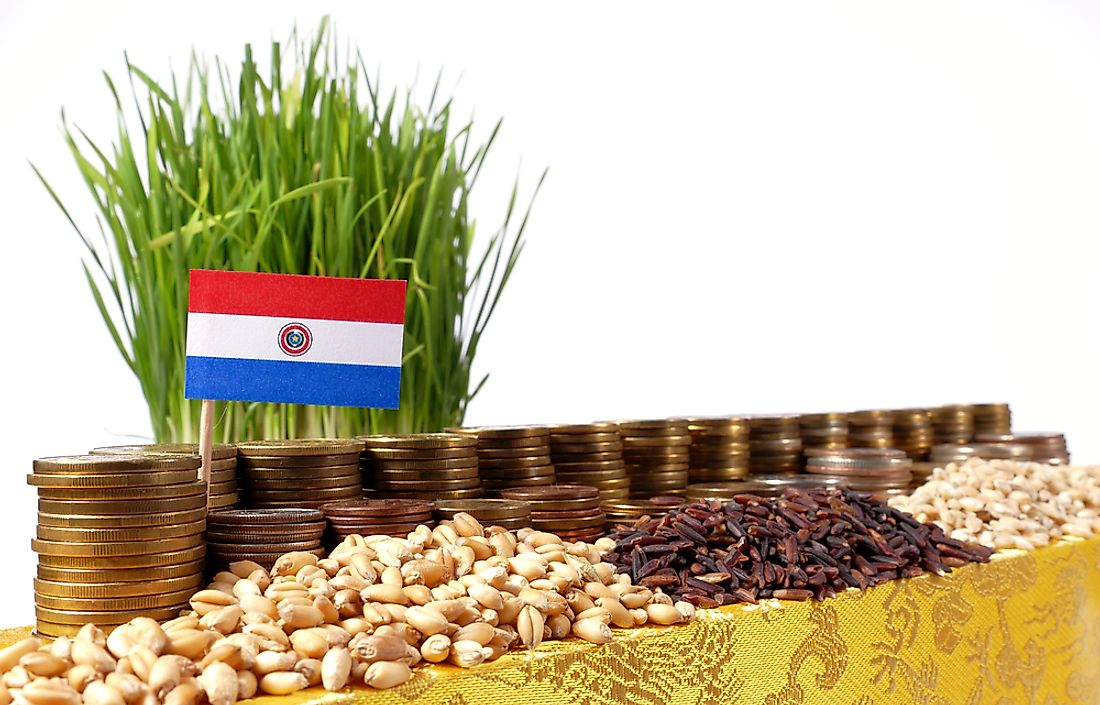 Agriculture makes up about 20% of Paraguay's yearly gross domestic product.