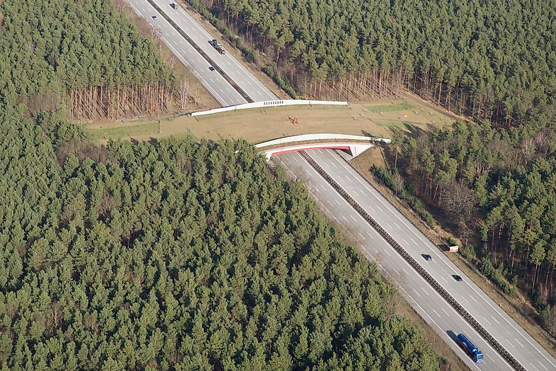 Due to concerns over habitat fragmentation, wildlife crossings such as this one are starting to become increasingly common.