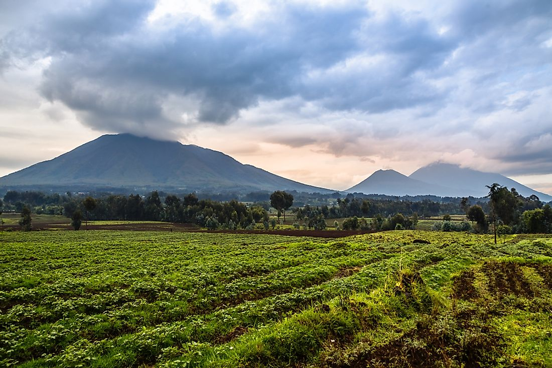 Volcanoes provide rich soil for agriculture.