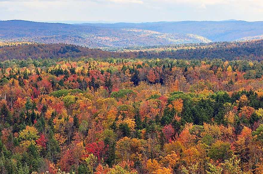Fall foliage of the Eastern Temperate Forests