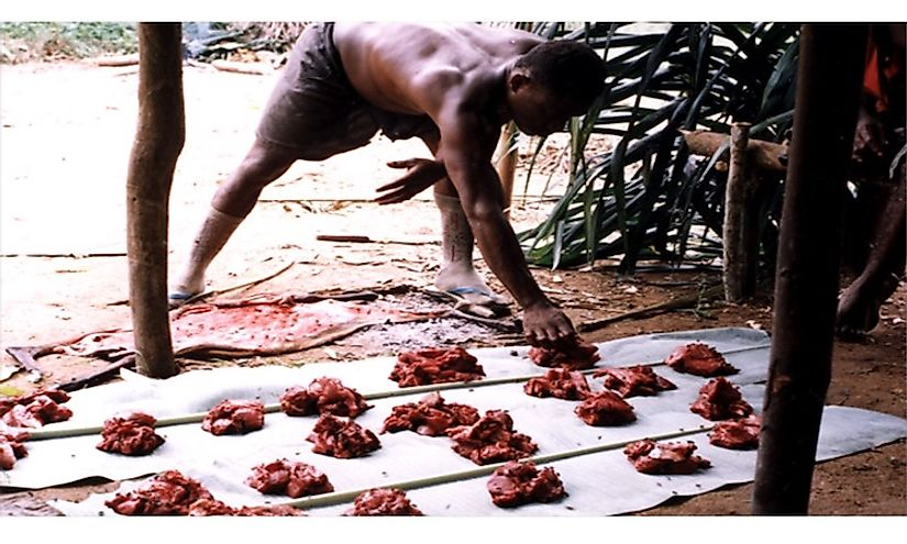 Meat sharing by Mbendjele hunter-gatherers is an example of a primitive communist practice.