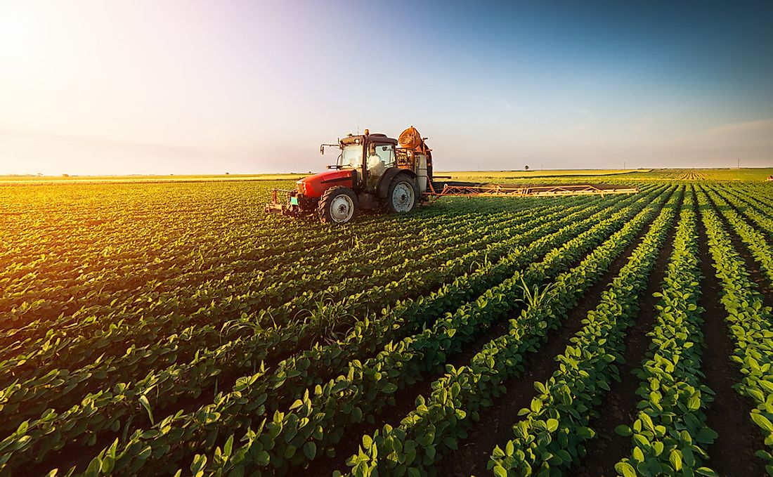 What is the Environmental Impact of Agriculture